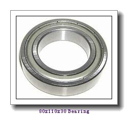 INA cylindrical roller bearings 80x110x30 Bearing
