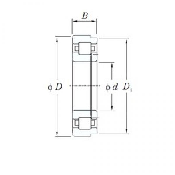 50 mm x 110 mm x 27 mm  KOYO NUP310 cylindrical roller bearings #2 image